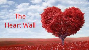 Heart Wall, Human Design, Body Code, Emotion Code, Dr. Bradley Nelson, Soul-healing