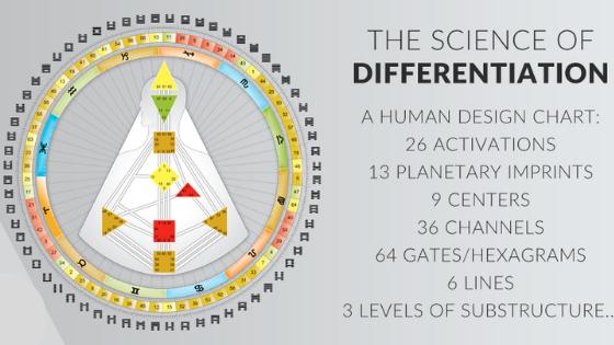 Human Design, Four Types of Human Design